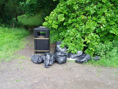 Smithy Wood June Litter Pick, looking to the future