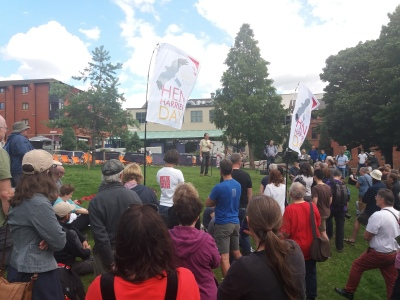 Sheffield Hen Harrier Day, a summary